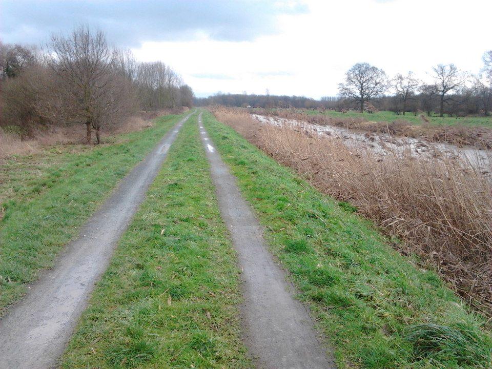 Inspeccionando el Canal de Mechelen
