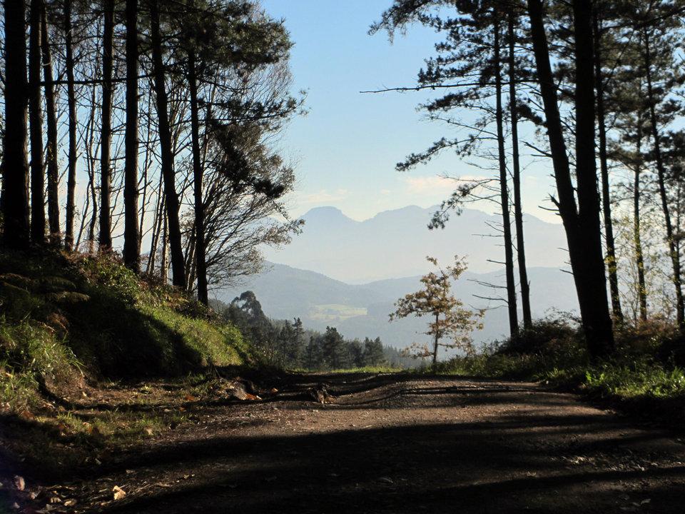 Monte de Oma