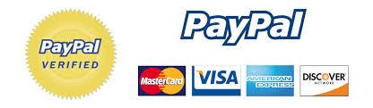 Paypal big
