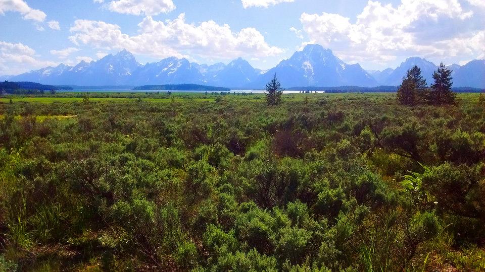 TABR – Wyoming
